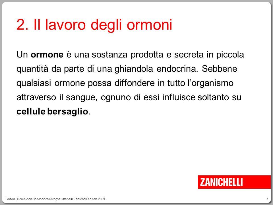 2. Il lavoro degli ormoni