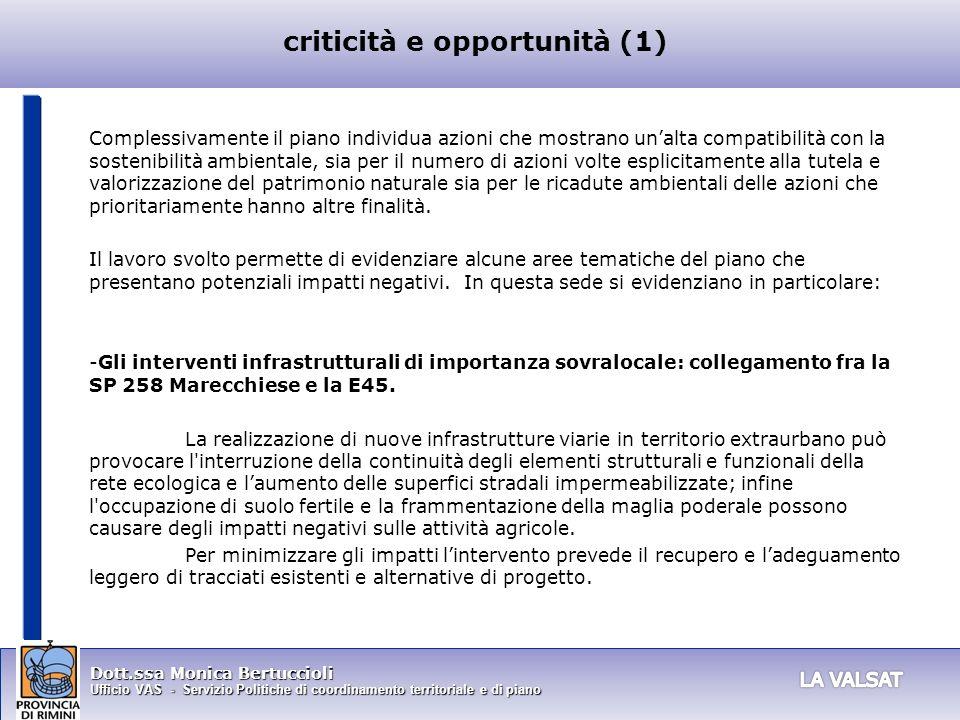 criticità e opportunità (1)
