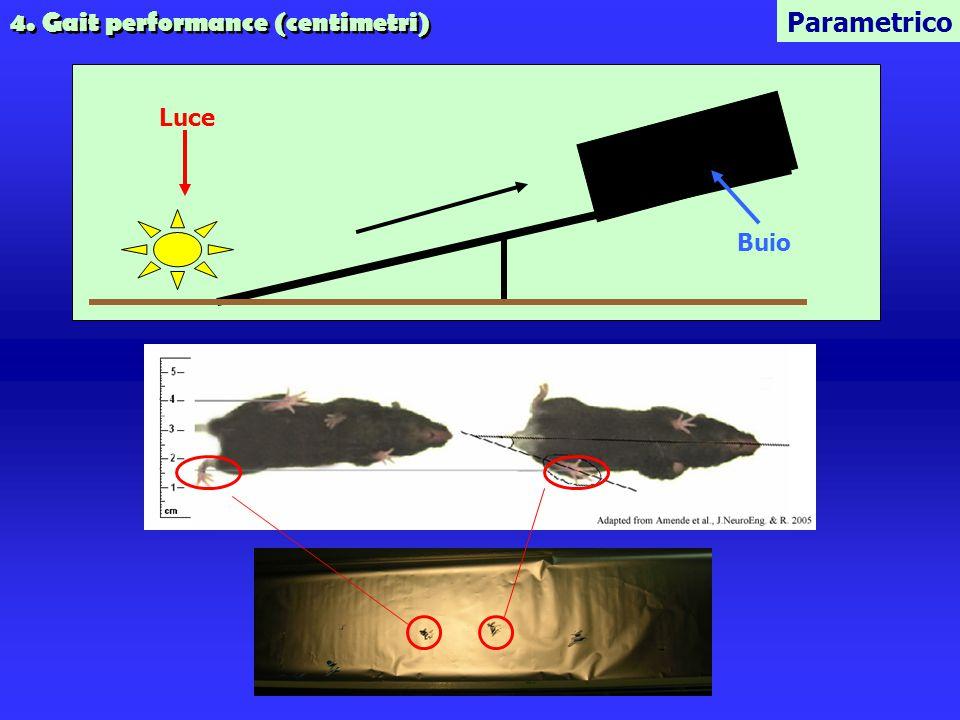 4. Gait performance (centimetri) Parametrico