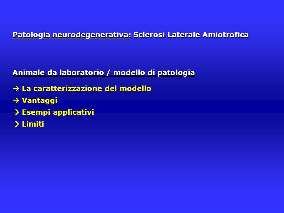 Patologia neurodegenerativa: Sclerosi Laterale Amiotrofica