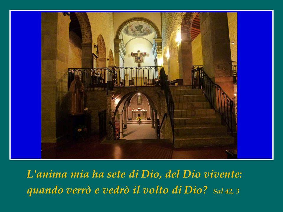 L anima mia ha sete di Dio, del Dio vivente: quando verrò e vedrò il volto di Dio Sal 42, 3