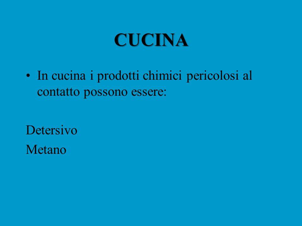 CUCINA In cucina i prodotti chimici pericolosi al contatto possono essere: Detersivo Metano
