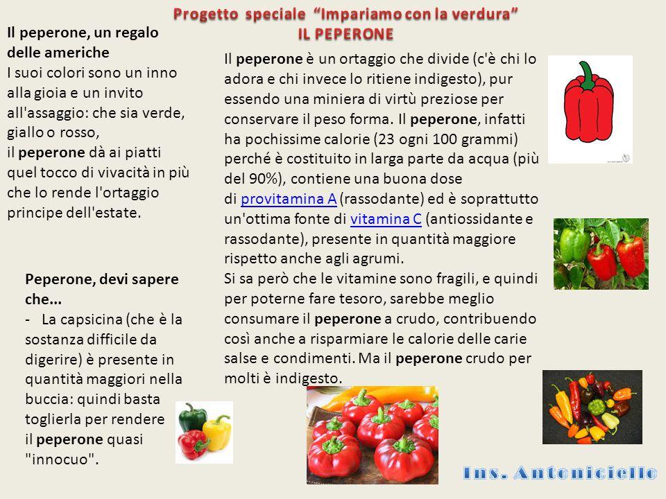 Progetto speciale Impariamo con la verdura