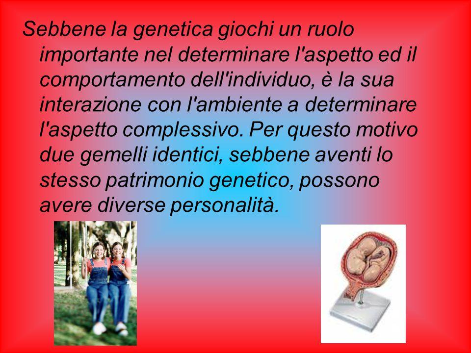 Sebbene la genetica giochi un ruolo importante nel determinare l aspetto ed il comportamento dell individuo, è la sua interazione con l ambiente a determinare l aspetto complessivo.