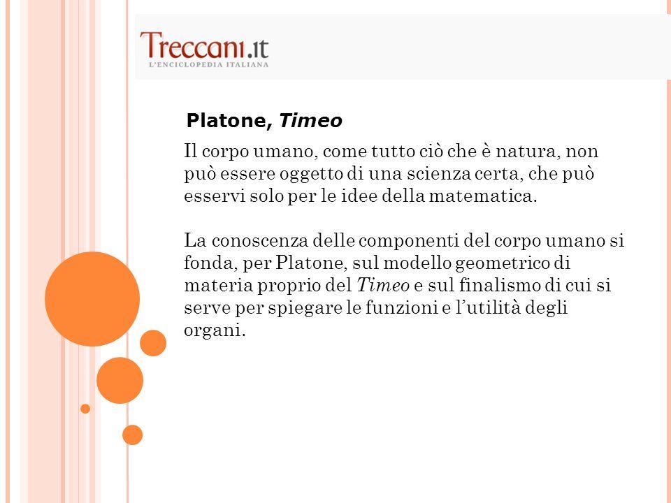 Platone, Timeo