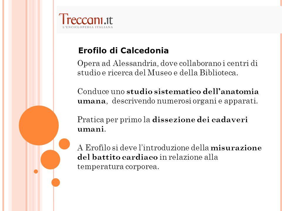 Erofilo di Calcedonia Opera ad Alessandria, dove collaborano i centri di studio e ricerca del Museo e della Biblioteca.