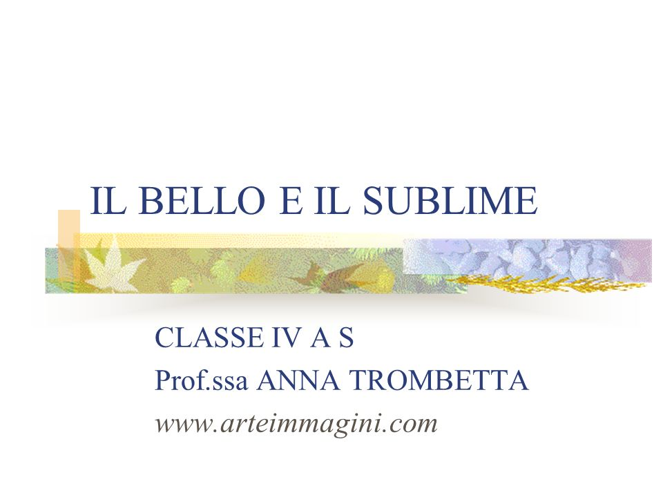 CLASSE IV A S Prof.ssa ANNA TROMBETTA www.arteimmagini.com