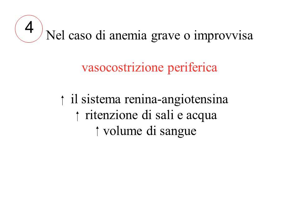 4 Nel caso di anemia grave o improvvisa vasocostrizione periferica il sistema renina-angiotensina ritenzione di sali e acqua volume di sangue.