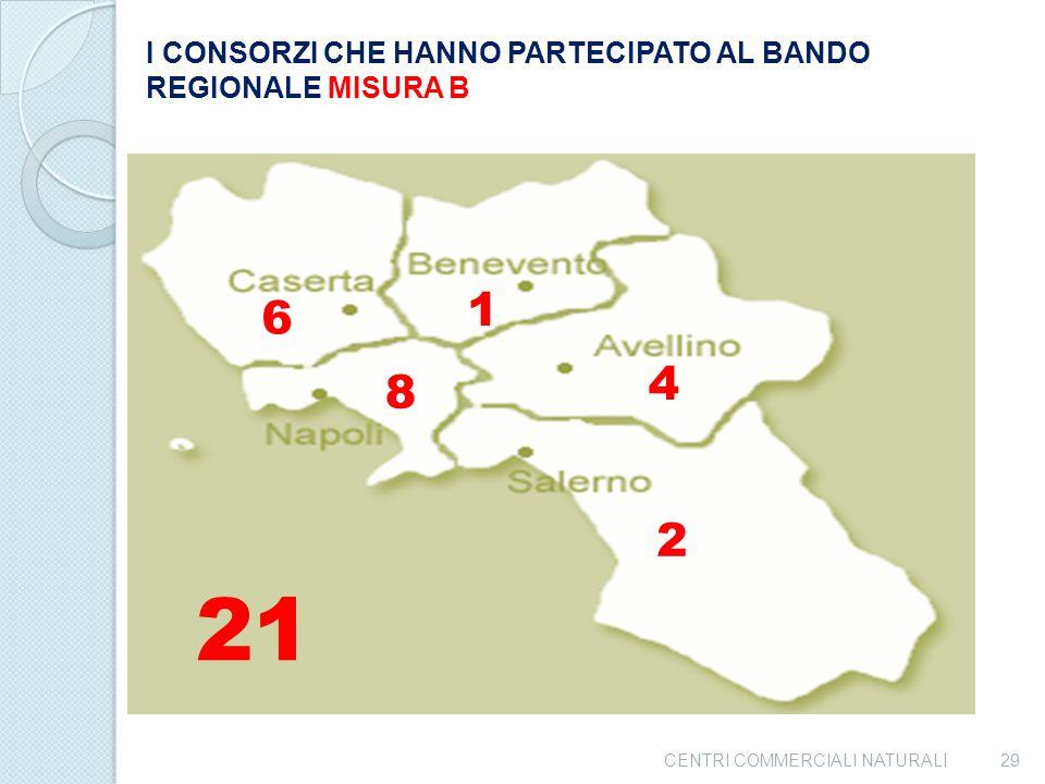 I CONSORZI CHE HANNO PARTECIPATO AL BANDO REGIONALE MISURA B