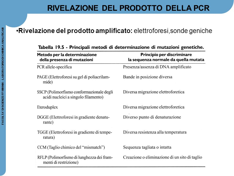 RIVELAZIONE DEL PRODOTTO DELLA PCR