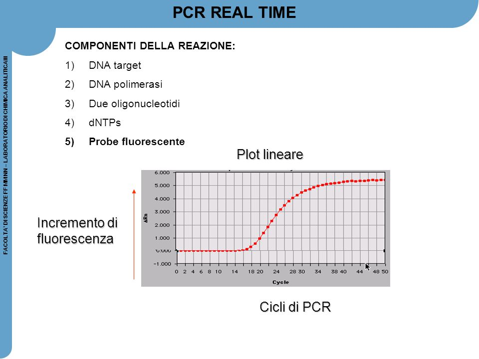 PCR REAL TIME Plot lineare Incremento di fluorescenza Cicli di PCR