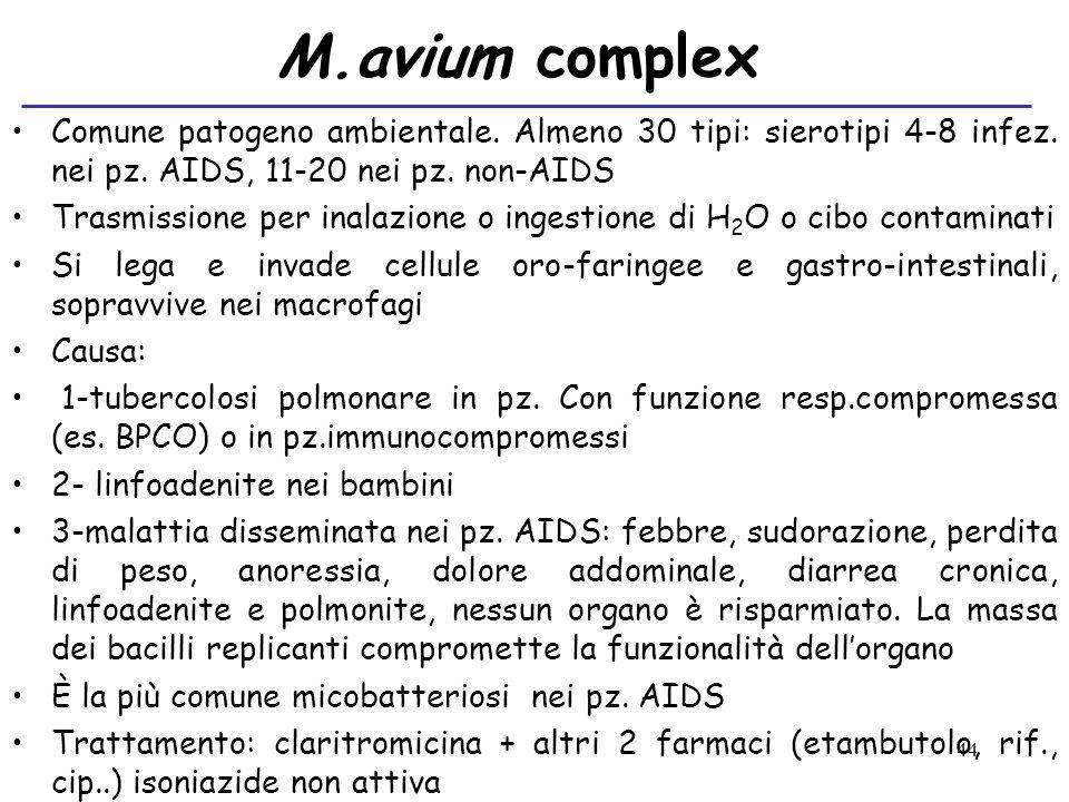 M.avium complex Comune patogeno ambientale. Almeno 30 tipi: sierotipi 4-8 infez. nei pz. AIDS, 11-20 nei pz. non-AIDS.