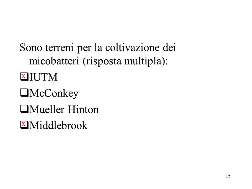 Sono terreni per la coltivazione dei micobatteri (risposta multipla):