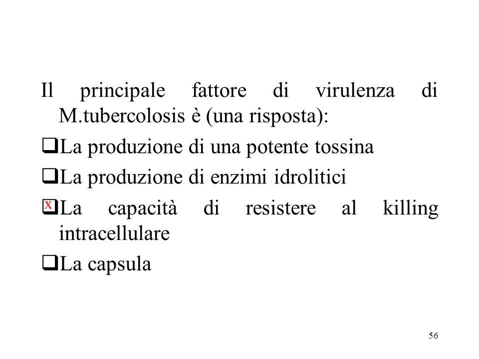 Il principale fattore di virulenza di M.tubercolosis è (una risposta):