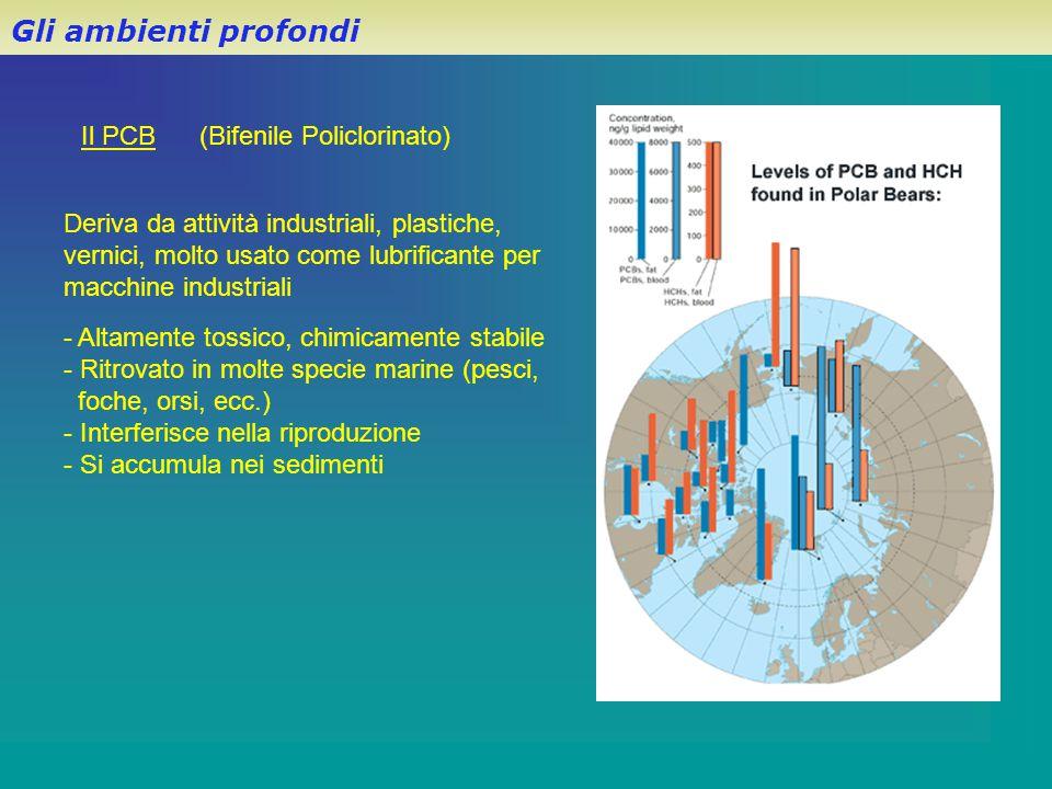 Gli ambienti profondi Il PCB (Bifenile Policlorinato)