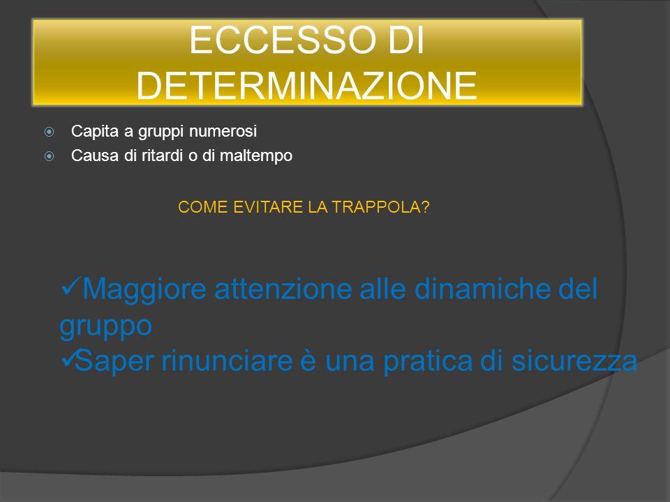 ECCESSO DI DETERMINAZIONE