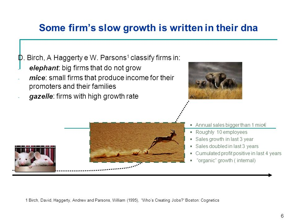 Some firm's slow growth is written in their dna