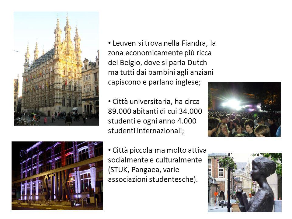 Leuven si trova nella Fiandra, la zona economicamente più ricca del Belgio, dove si parla Dutch ma tutti dai bambini agli anziani capiscono e parlano inglese;