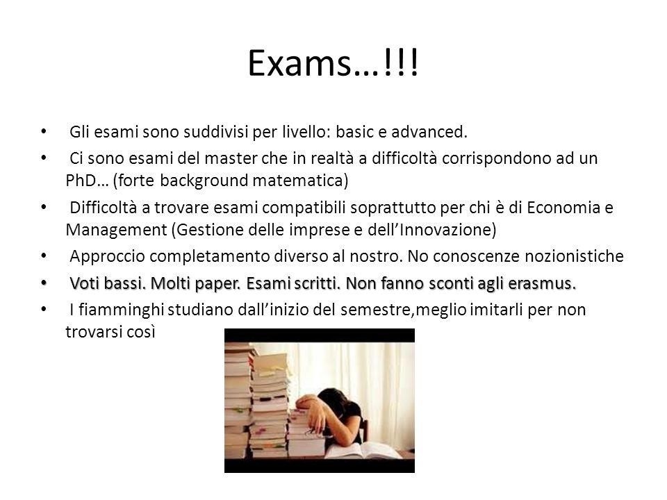 Exams…!!! Gli esami sono suddivisi per livello: basic e advanced.