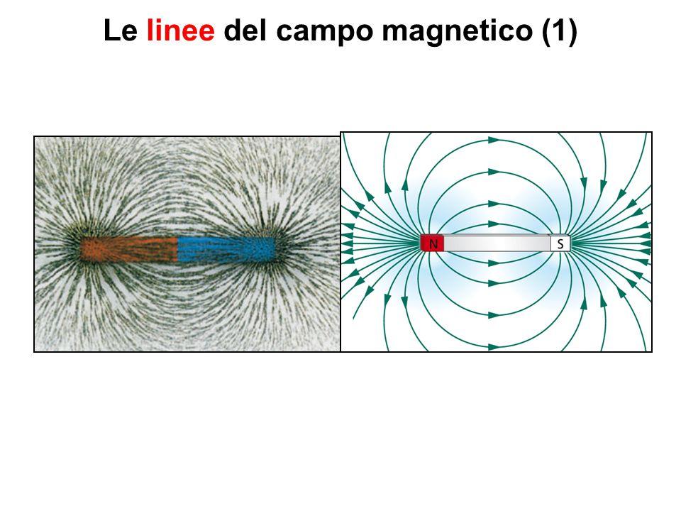 Le linee del campo magnetico (1)