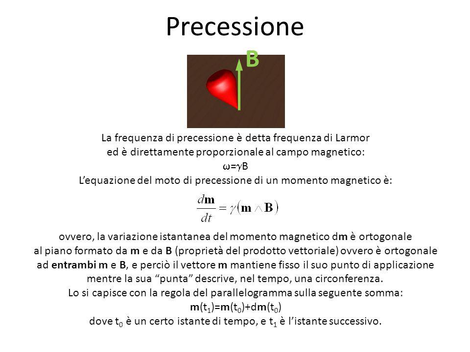 Precessione B. La frequenza di precessione è detta frequenza di Larmor ed è direttamente proporzionale al campo magnetico: w=gB.