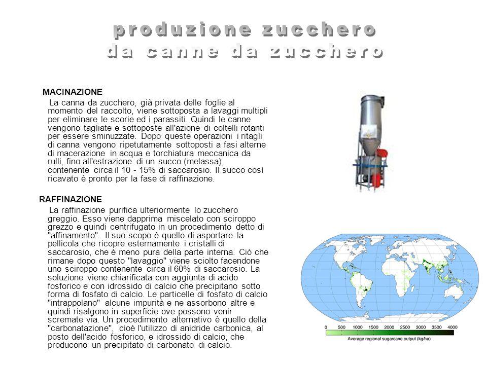 produzione zucchero da canne da zucchero MACINAZIONE