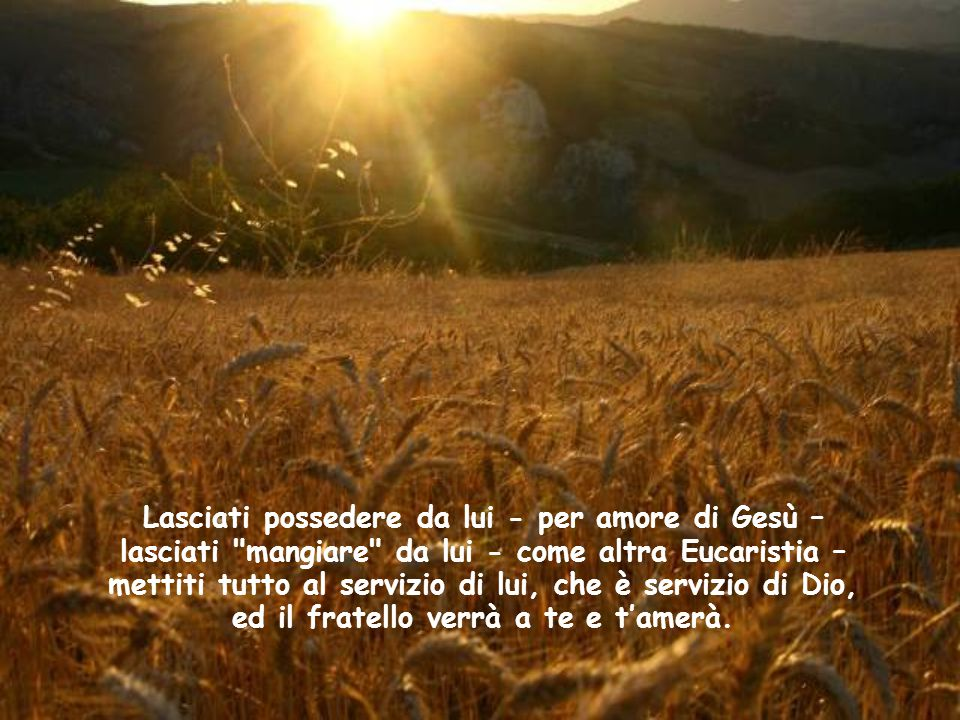 Lasciati possedere da lui - per amore di Gesù – lasciati mangiare da lui - come altra Eucaristia – mettiti tutto al servizio di lui, che è servizio di Dio, ed il fratello verrà a te e t'amerà.
