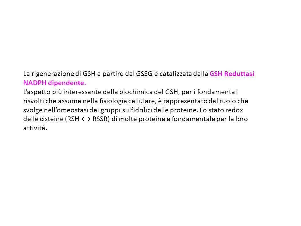 La rigenerazione di GSH a partire dal GSSG è catalizzata dalla GSH Reduttasi
