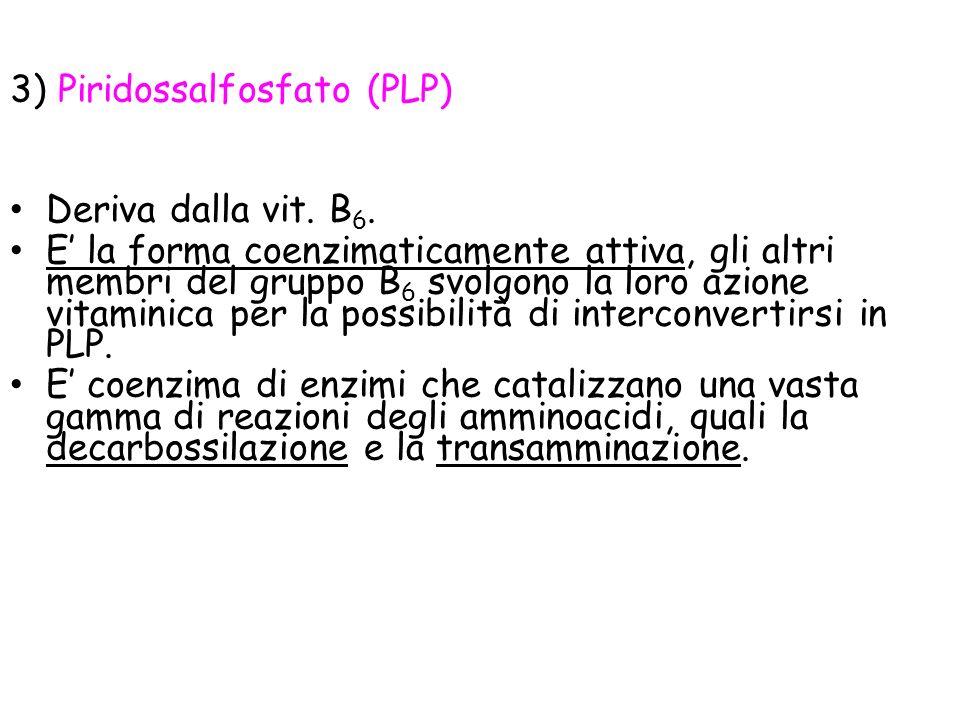 3) Piridossalfosfato (PLP)