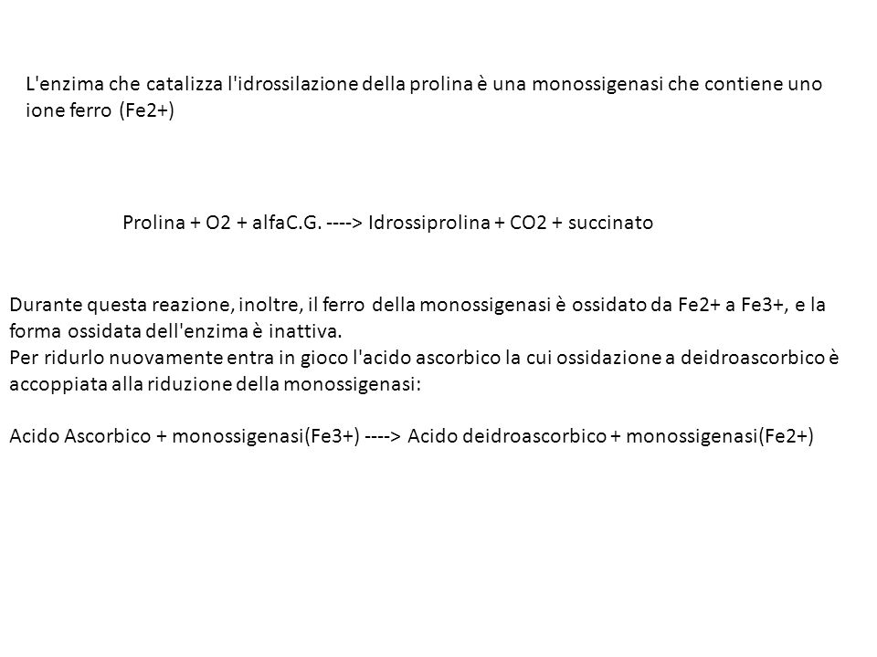 L enzima che catalizza l idrossilazione della prolina è una monossigenasi che contiene uno ione ferro (Fe2+)