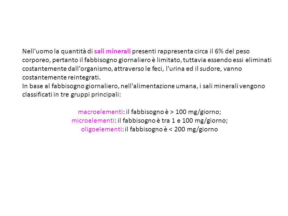 macroelementi: il fabbisogno è > 100 mg/giorno;