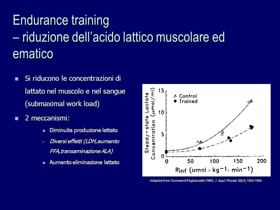 Endurance training – riduzione dell'acido lattico muscolare ed ematico