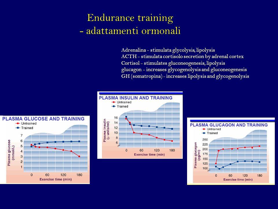 Endurance training - adattamenti ormonali
