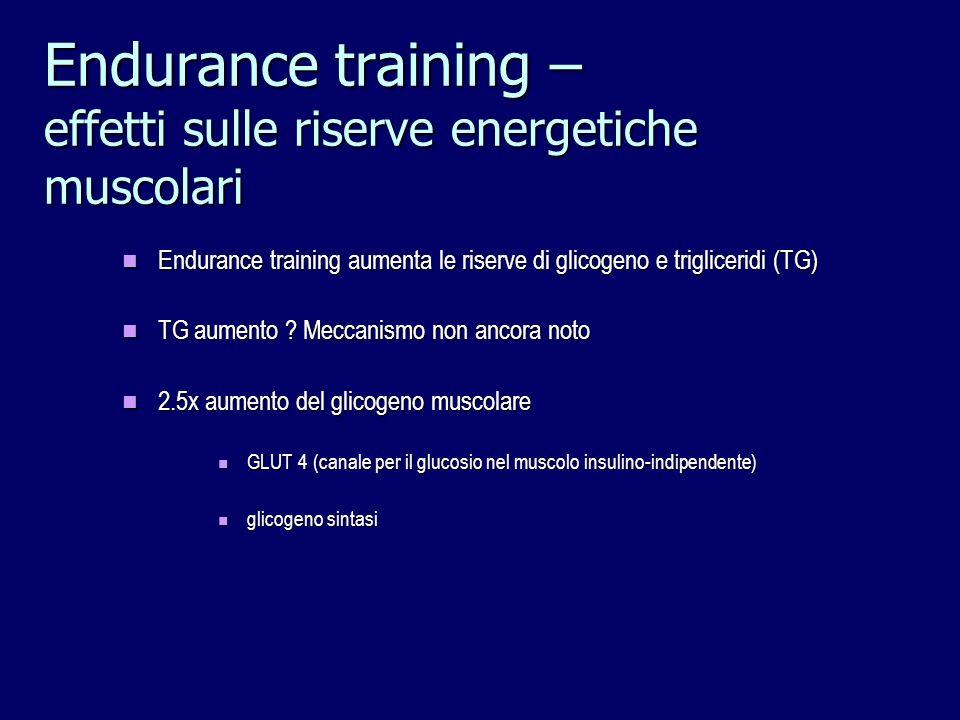 Endurance training – effetti sulle riserve energetiche muscolari