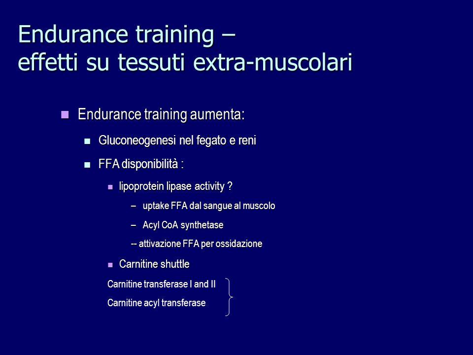 Endurance training – effetti su tessuti extra-muscolari