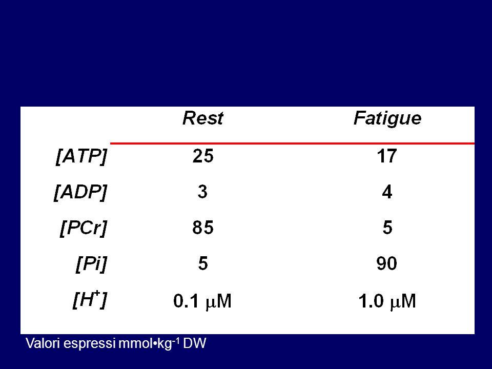 Valori espressi mmol•kg-1 DW
