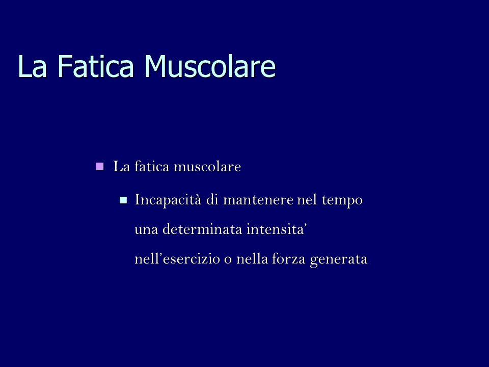 La Fatica Muscolare La fatica muscolare