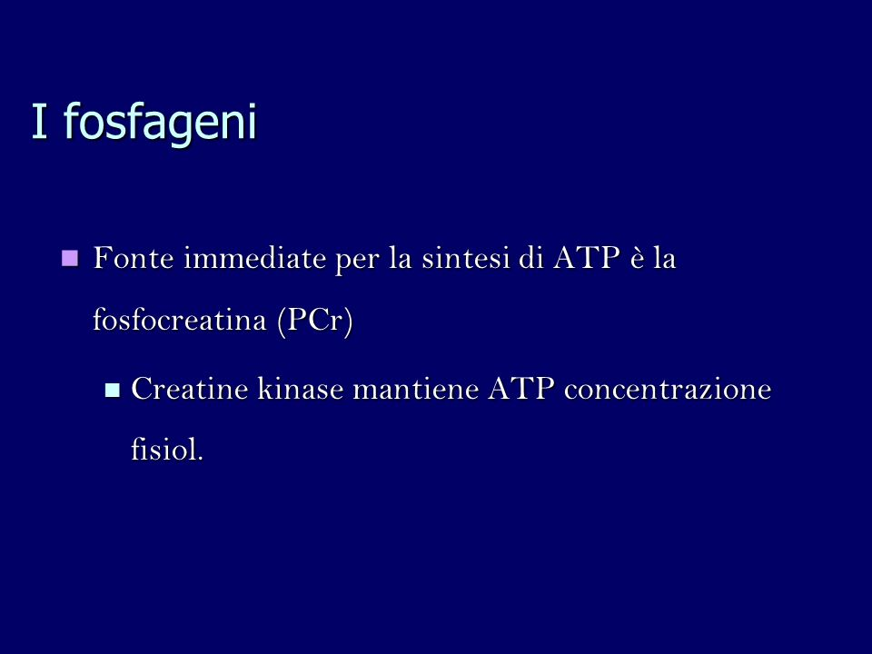 I fosfageni Fonte immediate per la sintesi di ATP è la fosfocreatina (PCr) Creatine kinase mantiene ATP concentrazione fisiol.