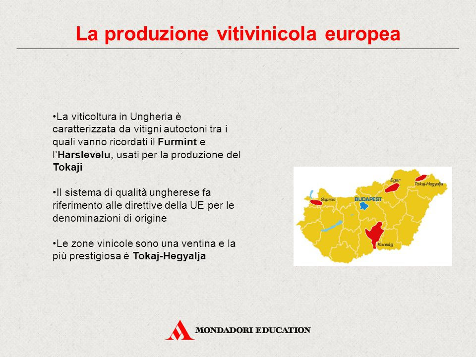 La produzione vitivinicola europea