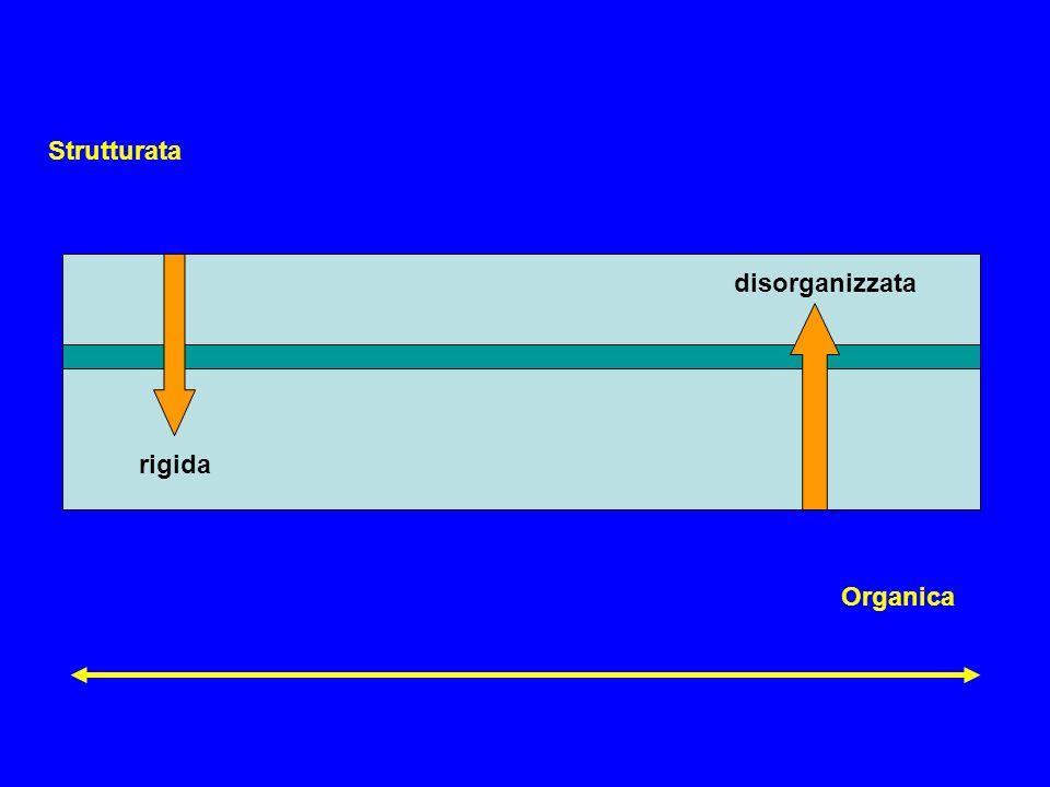 Strutturata disorganizzata rigida Organica