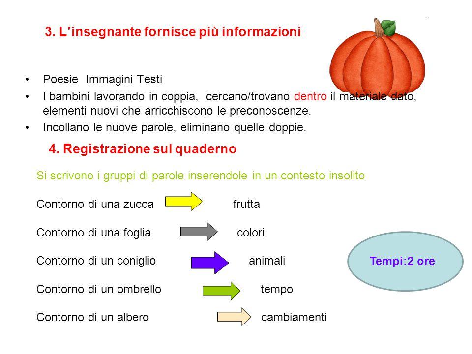 3. L'insegnante fornisce più informazioni