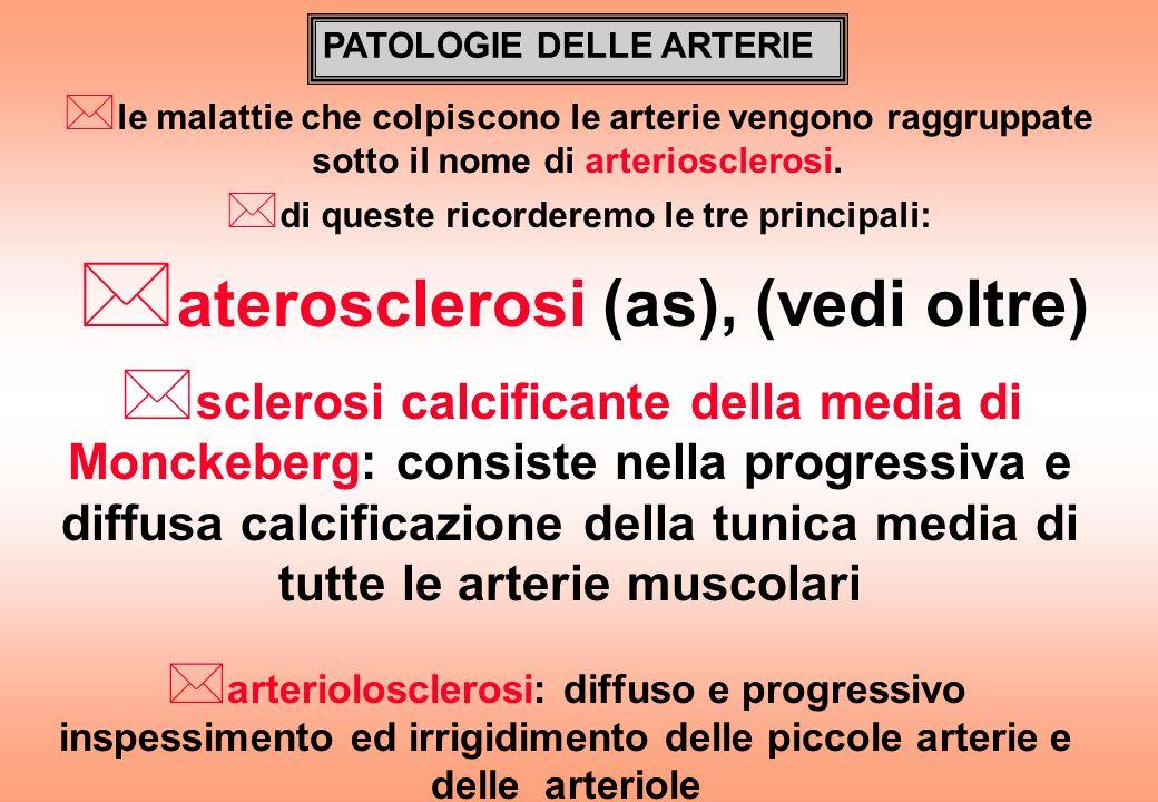 aterosclerosi (as), (vedi oltre)