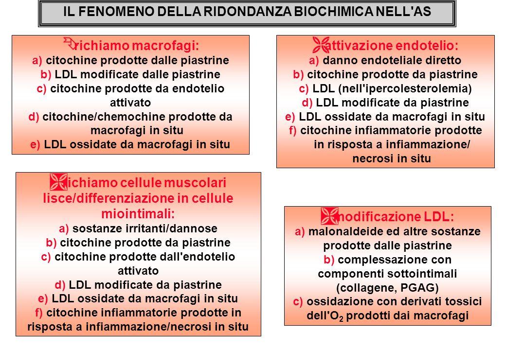 IL FENOMENO DELLA RIDONDANZA BIOCHIMICA NELL AS