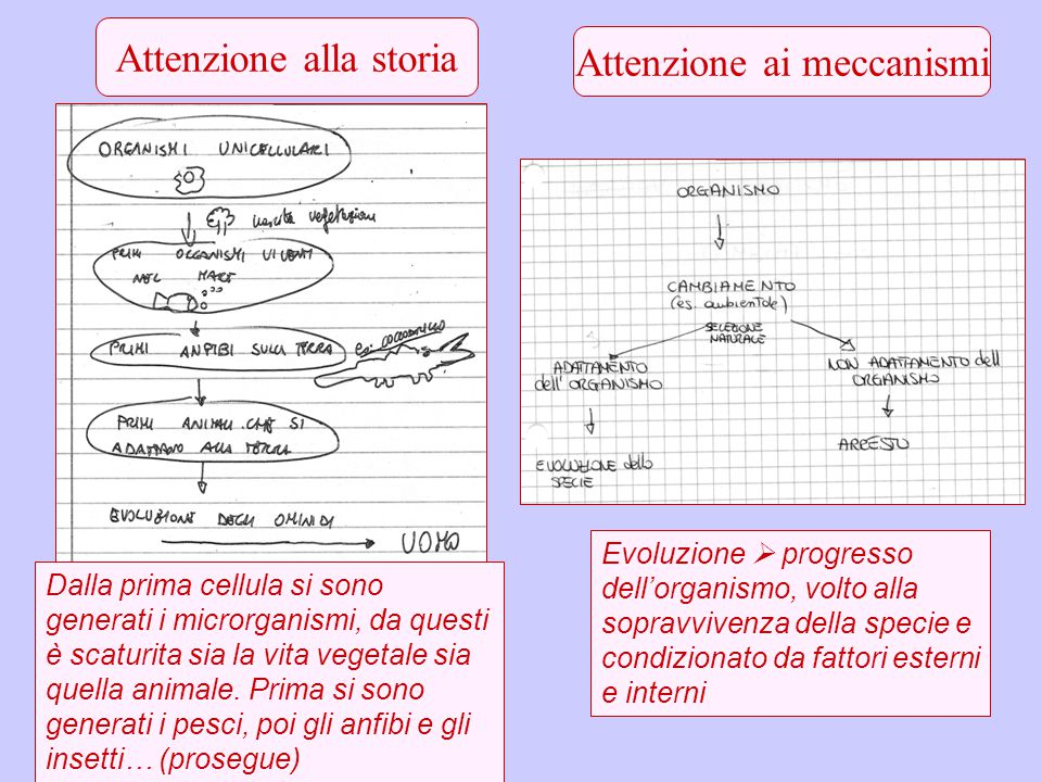 Attenzione alla storia Attenzione ai meccanismi