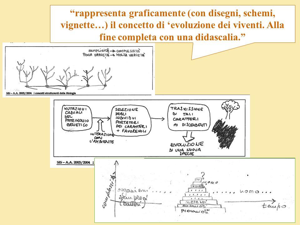 rappresenta graficamente (con disegni, schemi, vignette…) il concetto di 'evoluzione dei viventi.