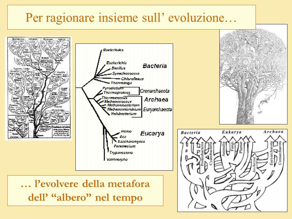 Per ragionare insieme sull' evoluzione…