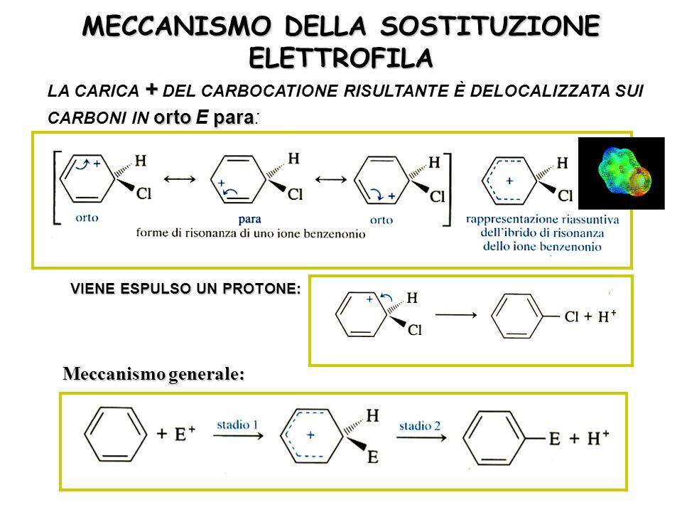 MECCANISMO DELLA SOSTITUZIONE ELETTROFILA