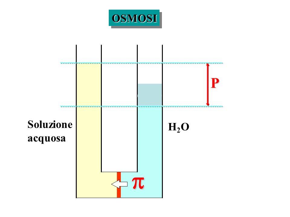 OSMOSI P Soluzione acquosa H2O p