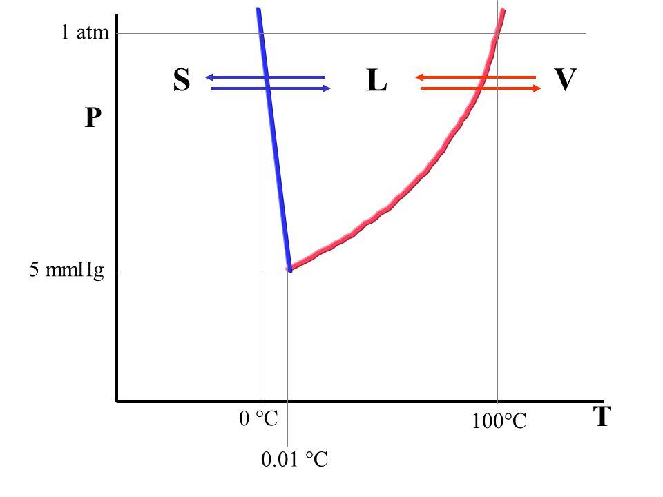 1 atm S L V P 5 mmHg T 0 °C 100°C 0.01 °C