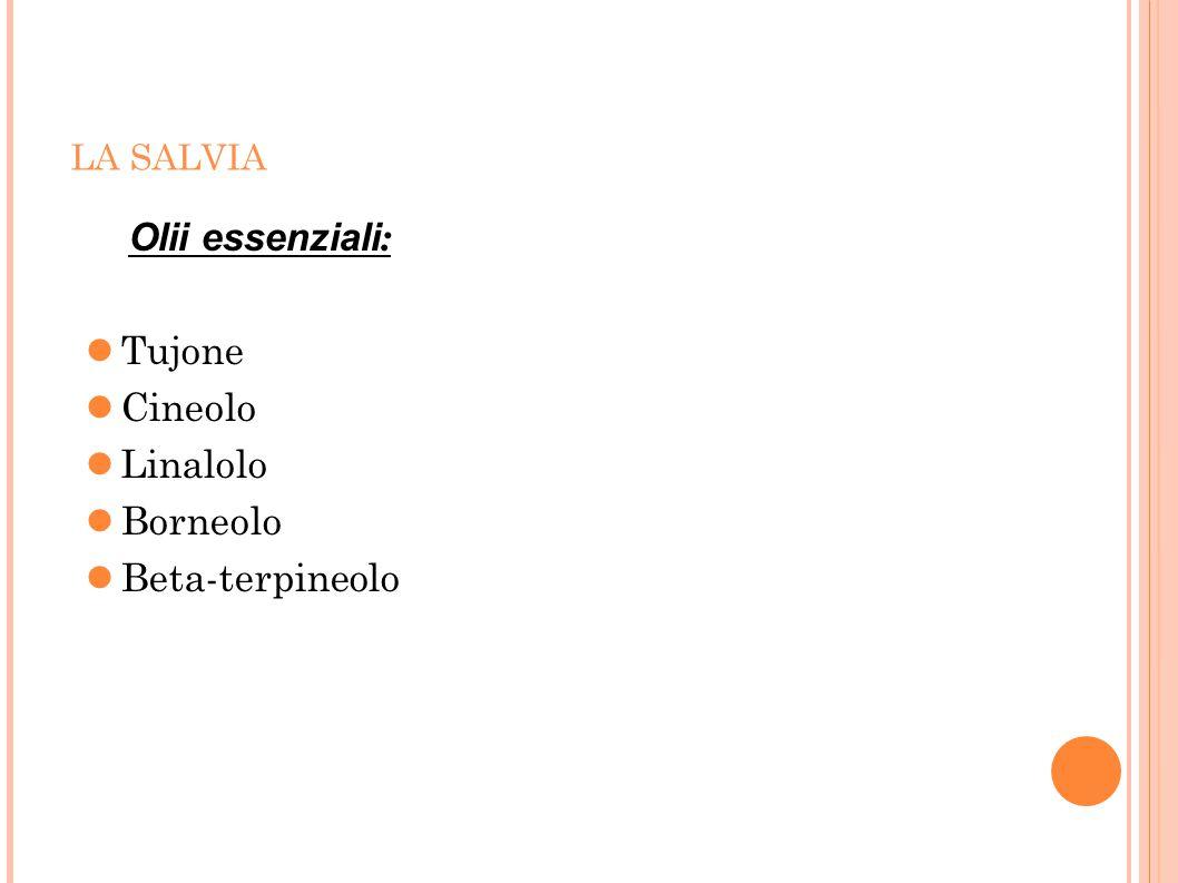 Olii essenziali: Tujone Cineolo Linalolo Borneolo Beta-terpineolo